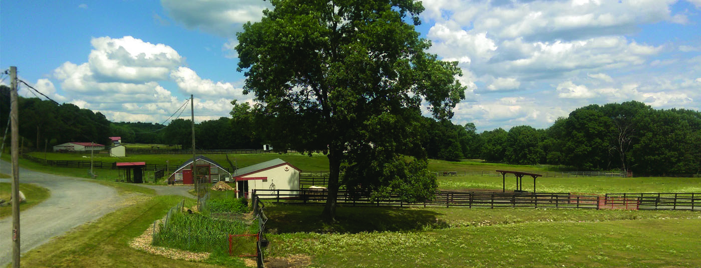 The front of the farm
